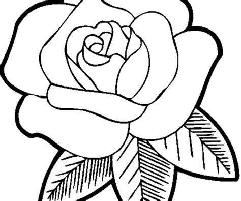 coloring pages of derrick rose derrick rose free colouring pages