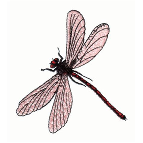 embroidery design dragonfly pink dragonfly embroidery design dragonflies other bugs