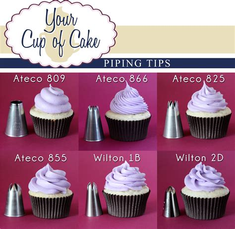 Cupcakes Decorating Tips by Piping Tips Your Cup Of Cake