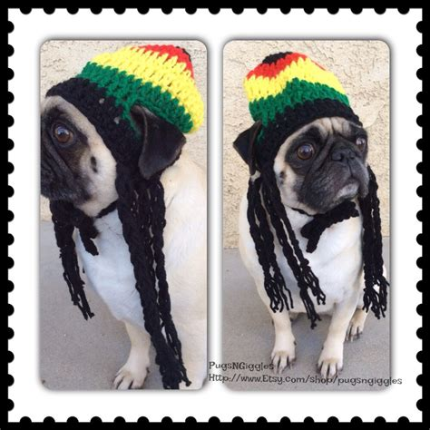 beanies for dogs rasta hat hats for dogs rasta hat for dogs pugs novelty