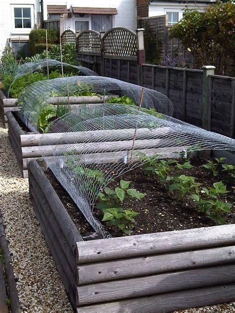 raised veg beds raised vegetable beds garden pinterest