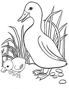 Coloring page duck | Duck, ducklings, Make way for