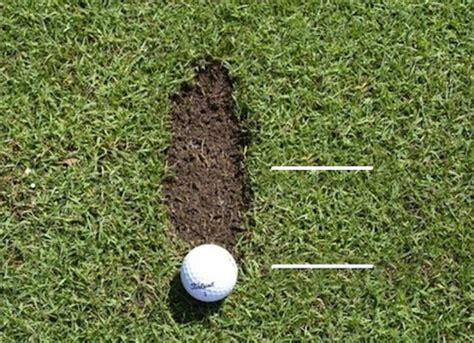 golf swing divot ot golf pros club fitters tigerdroppings com