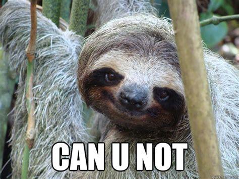 Can You Not Meme - can u not foul bachelor sloth quickmeme