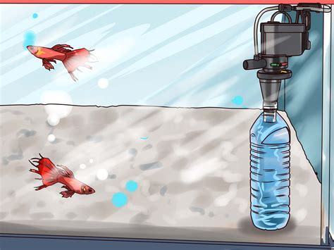 under water filter 3 ways to make your own underwater aquarium filter wikihow