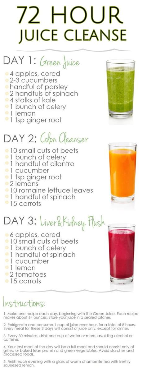 Juice Cleanse Recipes 3 Day Detox best 25 smoothie cleanse ideas on smoothie