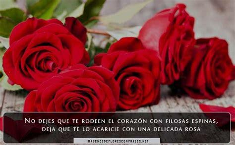 imagenes tiernas de amor con rosas im 225 genes de rosas de amor con frases tiernas para dedicar