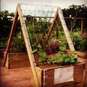 vertical gardening trellis ideas vertical gardening the kid and the