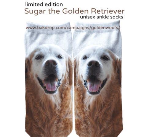 golden retriever socks golden woofs socks golden woofs