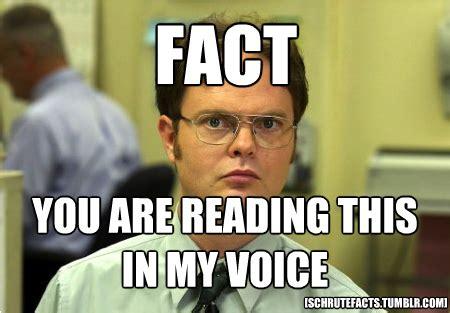 Dwight Meme - the best of the schrute facts meme dunder mifflin tvs