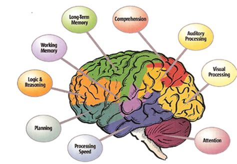 the inventive mind the adhd learning model book 1 books bay area california add adhd treatment initial