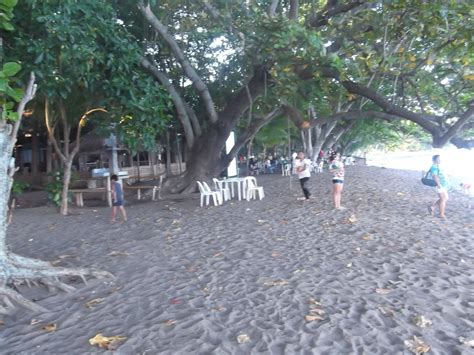 oriental for sale dauin beach resort for sale negros oriental philx pat