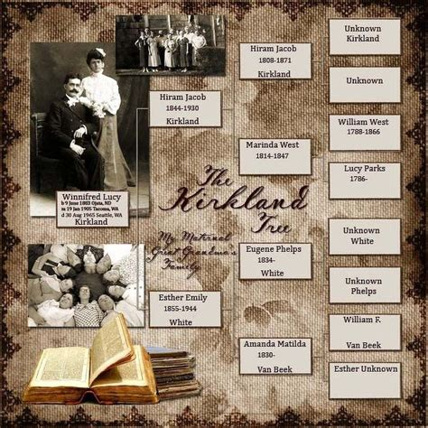 scrapbook layout family tree top 25 ideas about genealogy scrapbooking ideas on