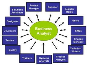 Ba Roles And Responsibilities by 8 Steps To Being An Effective Business Analyst Improve Yourself Daily