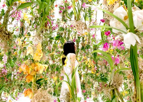 garden of flower shop teamlab immerses visitors in an interactive floating