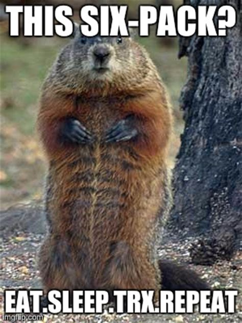 groundhog day repeat groundhog day repeat 28 images groundhog day will