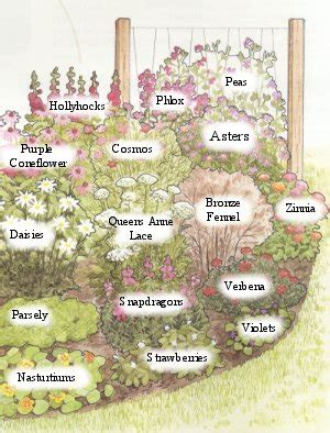 How To Design A Flower Garden Layout Butterfly Garden Plans