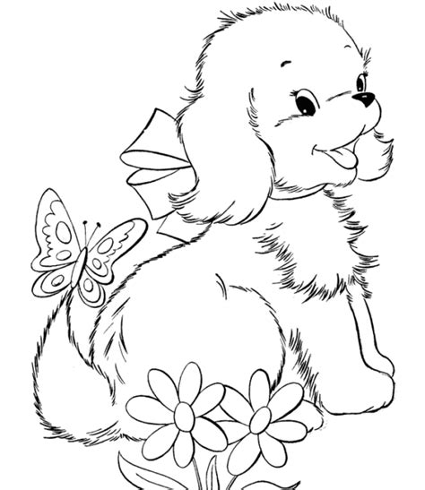 cat dog coloring pages coloring pages