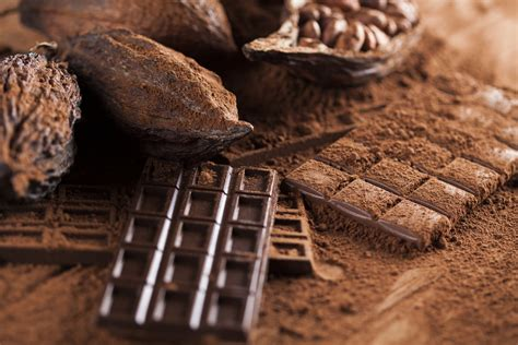 Chocolate La cient 237 ficos aseguran que el chocolate se extinguir 225 en el