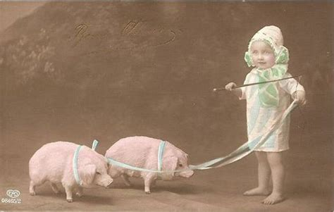 retro photos vintage postcard little girl w pigs chicks57 flickr