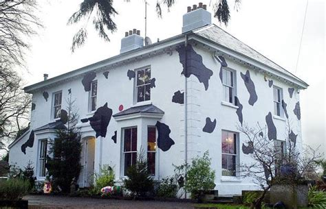 cow house hotel r best hotel deal site