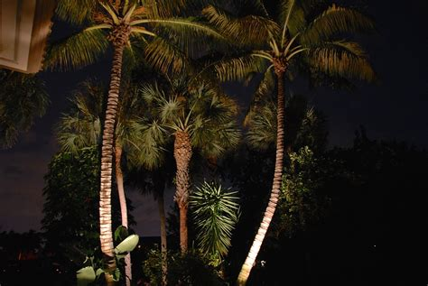 lighting fort myers fl fort myers outdoor lighting inspiration gallery outdoor