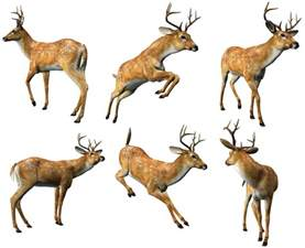 Chair Clipart Free 3d Deers Collection Png Clipart Gallery Yopriceville