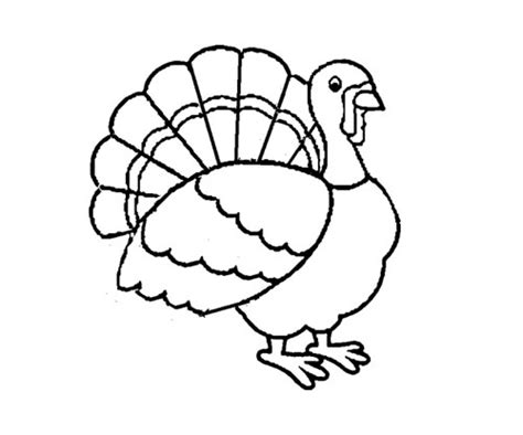 parts of a turkey coloring page free coloring pages of turkey parts