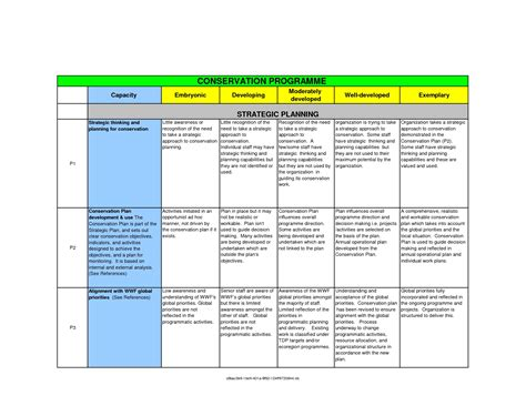 Strategic Planning Template Tryprodermagenix Org Strategic Planning Process Template