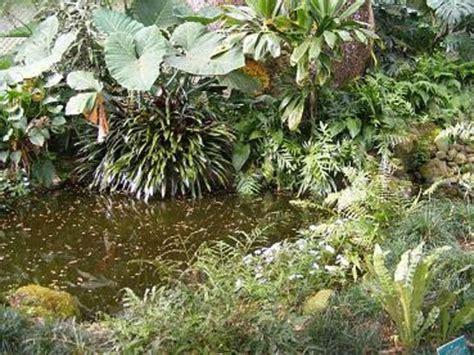 Waimea Arboretum And Botanical Garden The Waterfall Picture Of Waimea Arboretum And Botanical Garden Oahu Tripadvisor