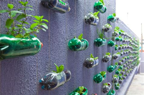 Pet Bottle Vertical Garden Vertical Garden Built From Hundreds Of Recycled Soda