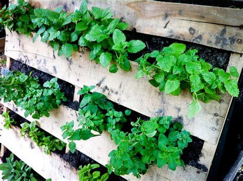 pallet vertical garden 16 do it yourself ideas wooden