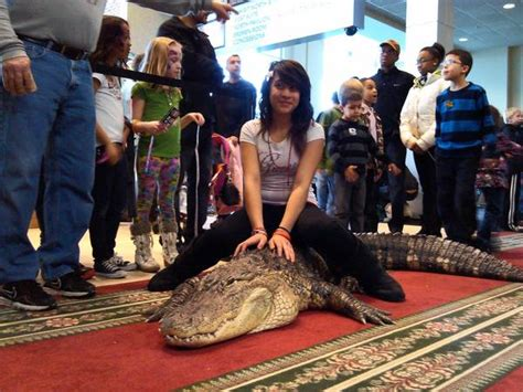 Chicago Reptile House by Tinley Convention Center Comes Alive For Reptile Show