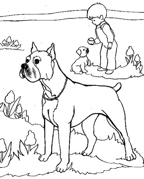 boxer dogs colouring pages page 2