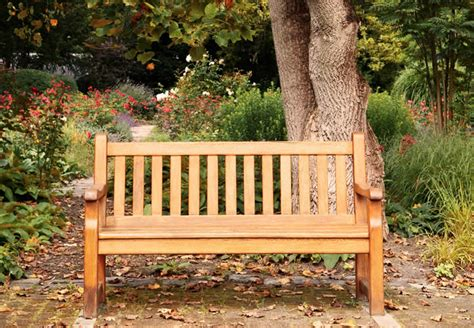 picture of a park bench the one who knocks oumar s mussa aspiring writer the