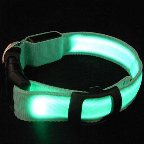 glowing collar excellent led pet cat led collar safety glow necklace lighting up xs s