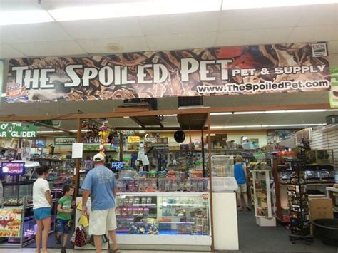 the spoiled pet myrtle beach sc top tips before you go