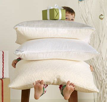 Tempurpedic Pillows At Walmart by To Travel In Style In Flight Tempur Pedic 3 In One Travel