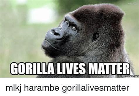 Gorilla Warfare Meme - 25 best memes about gorilla lives matter gorilla lives