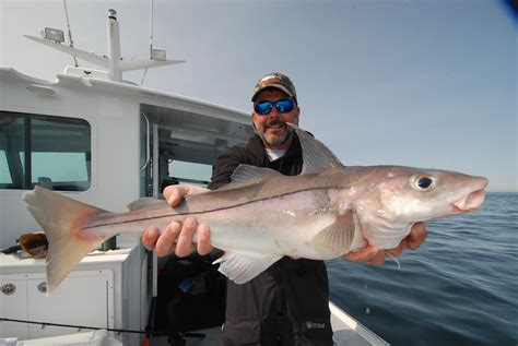 boat fishing for haddock nh proposes haddock limit reduction cod moratorium new