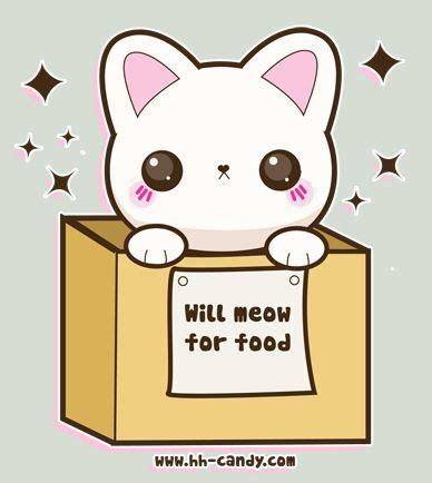 Im Dying im dying animals gato kawaii y dibujo