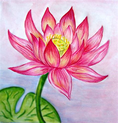 libro flowers in colored pencil 25 best ideas about beautiful flower drawings on flower drawings pretty flower