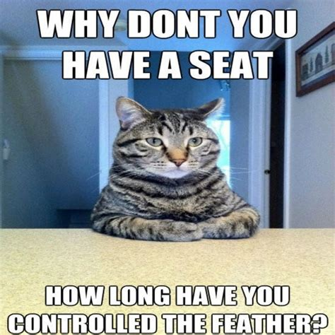 Hilarious Pictures Memes - funny cat memes 40 hilarious pictures page 2