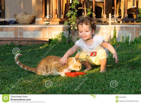 Ailurophile Unite ailurophile baby loving cat on grass stock