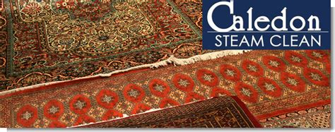 rug stores mississauga rug cleaners in brton caledon bolton mississauga barrie on