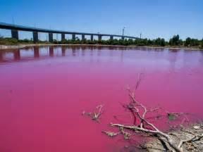 pink lake in the fringe of cbd melbourne