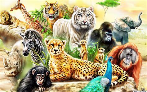 überwachungskamera für tiere die 80 besten hintergrundbilder der sch 246 nen tiere f 252 r desktop