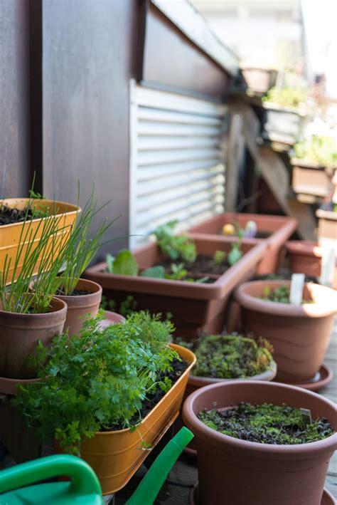 Gardening Balkon by Neues Vom Balkon Oder Real Gardening My