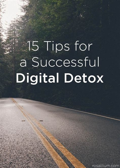 Alternatives For Social Media Digital Detox by 1468 Best Social Media Images On