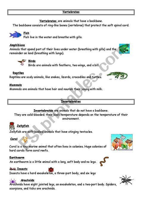 vertebrates invertebrates esl worksheet by danscic